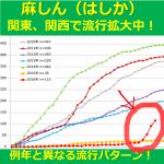 【関東、関西で流行拡大中!】 例年と異なる流行パターンの麻しん(はしか)について学ぼう!